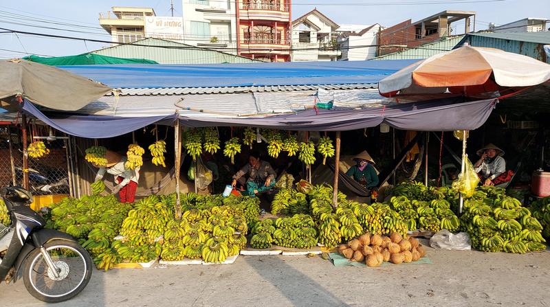 Banana merchants