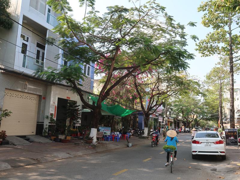 Ly Thai Ton