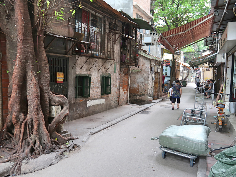 Alley tree