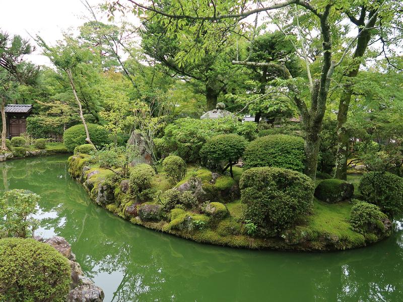 Kiyomizu Dera garden