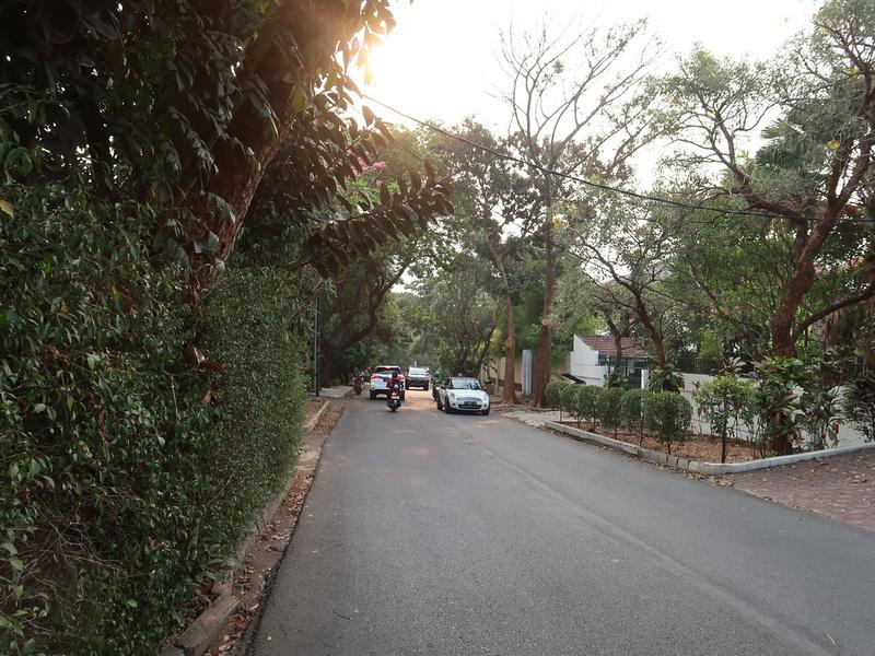 Green streets of Kemang