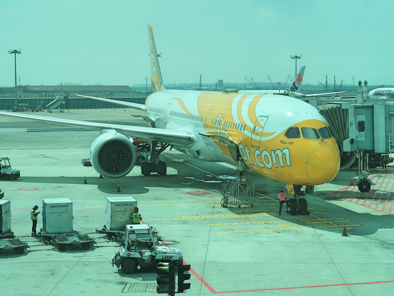 Flight Review: Scoot – Singapore to Melbourne