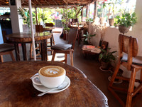 IMG_7944-cafe-at-wellness
