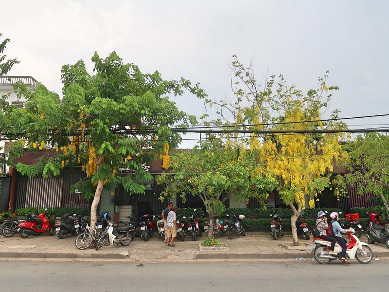 Cafe Hoang Viet