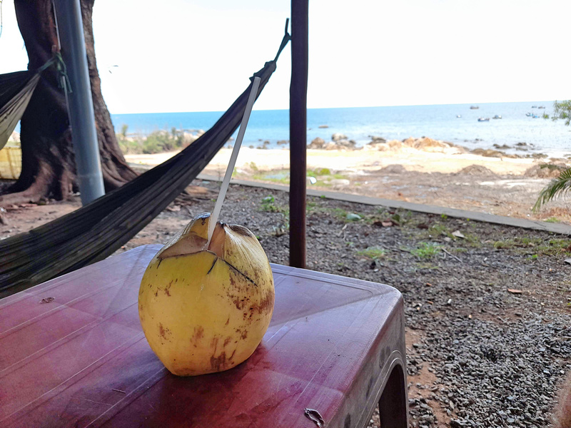 Coconut view