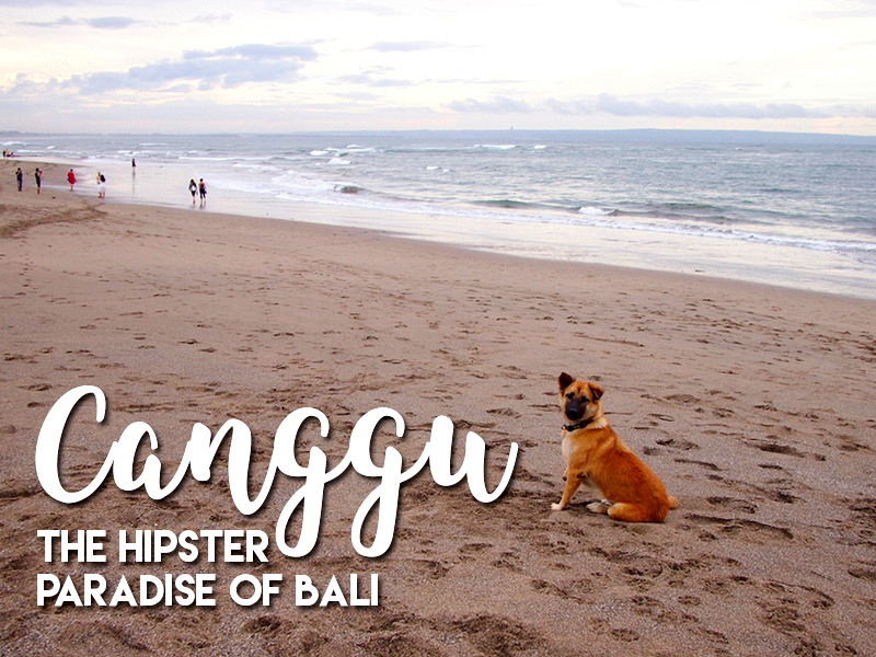 Canggu - the hipster paradise of Bali