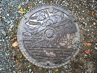 P9297766-lake-towada-drain-cover