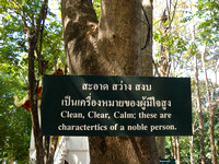 Chiang Mai - Buddhist Quotes