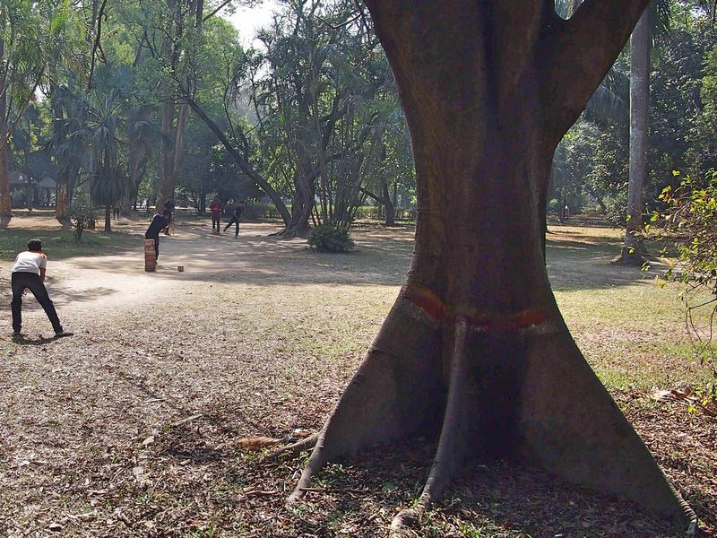 Ramna Park cricket