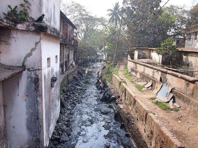 Black water stream