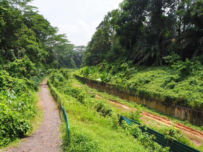 Rail path