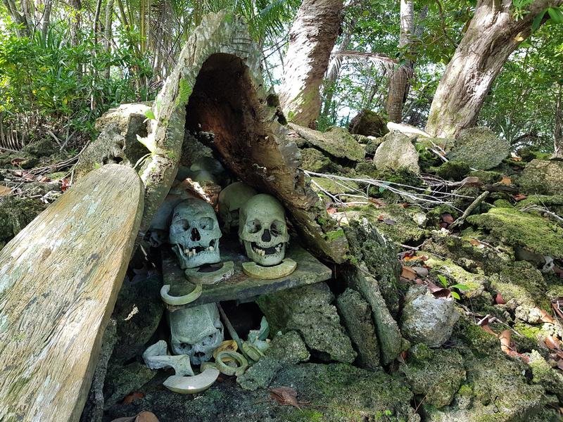 Skull Island skulls