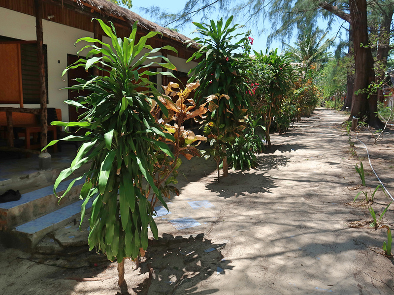 Garden at Kradan Beach Resort