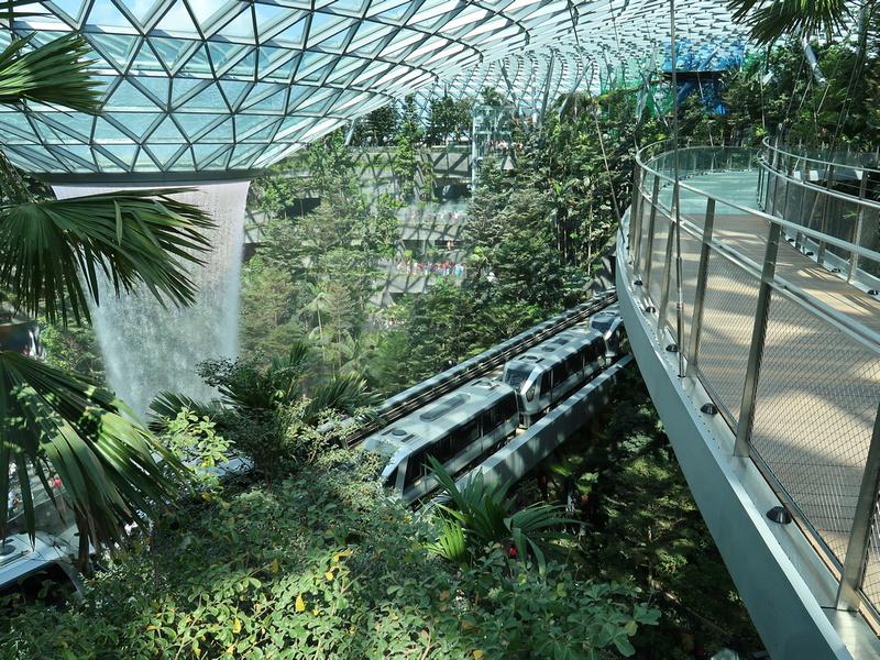 Canopy bridge view