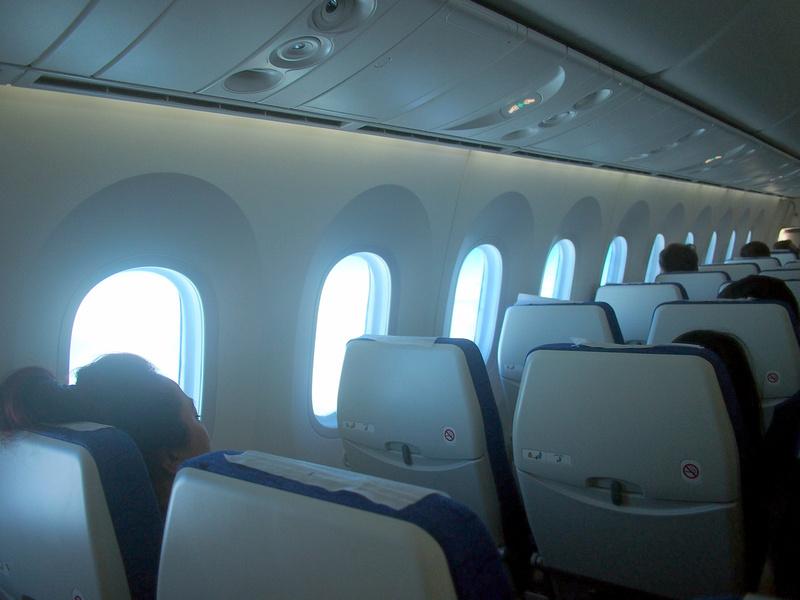 787 windows