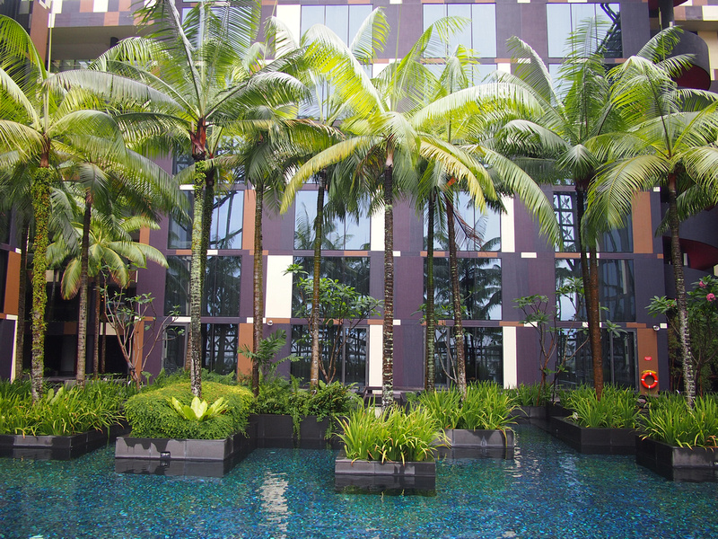 Crowne Plaza Changi - pool trees
