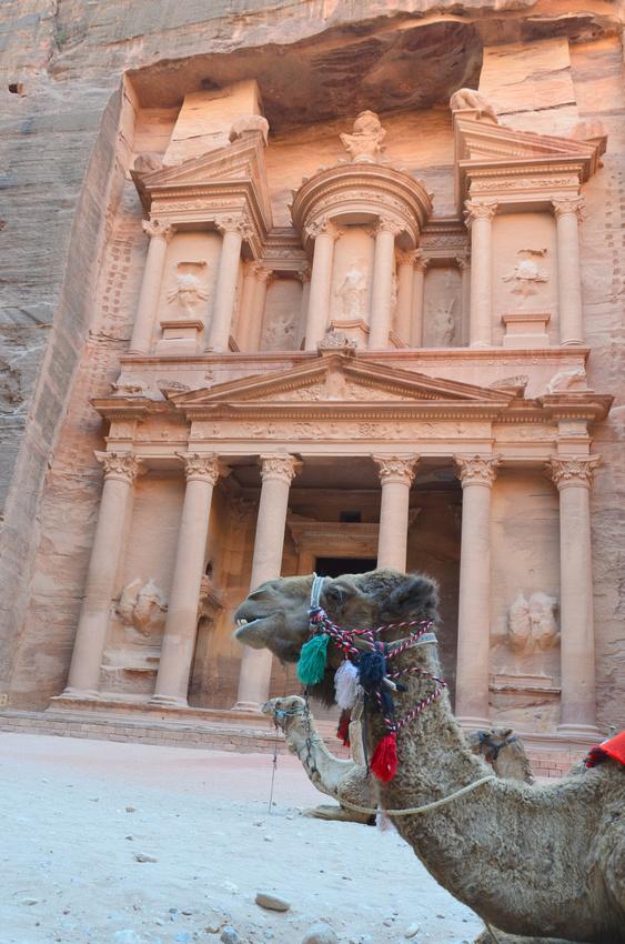 Treasury and camels at Petra - Jordan