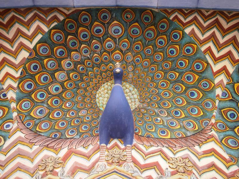 Peacock at City Palace - Jaipur