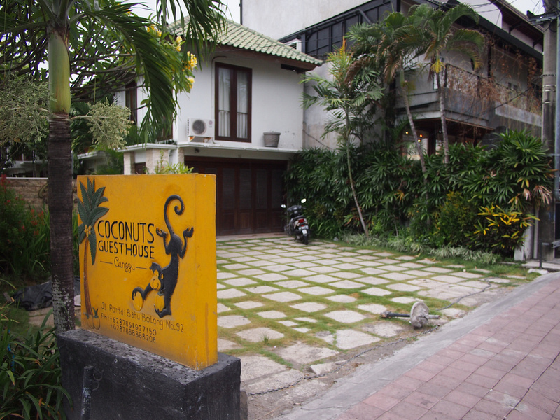 Coconuts Guesthouse