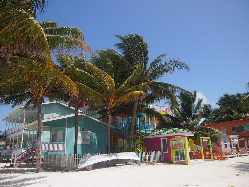 Tropical Caye Caulker