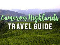 cameron-highlands-travel-guide