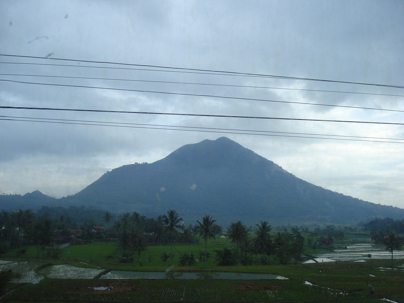 Java from the train