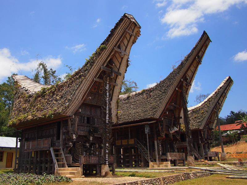 Tongkonan Houses - Tana Toraja
