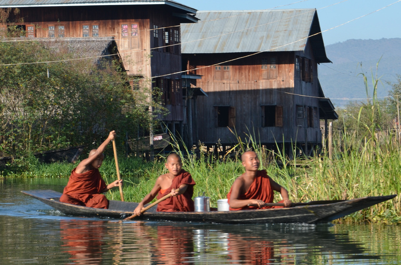 Boy monks