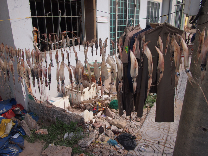 Drying squid and clothes