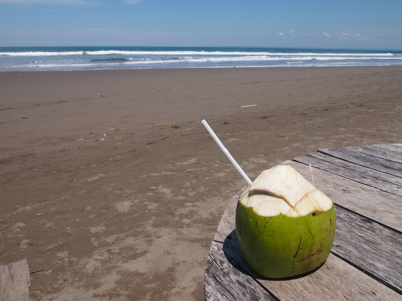 Coconut on Pangandaran Beach
