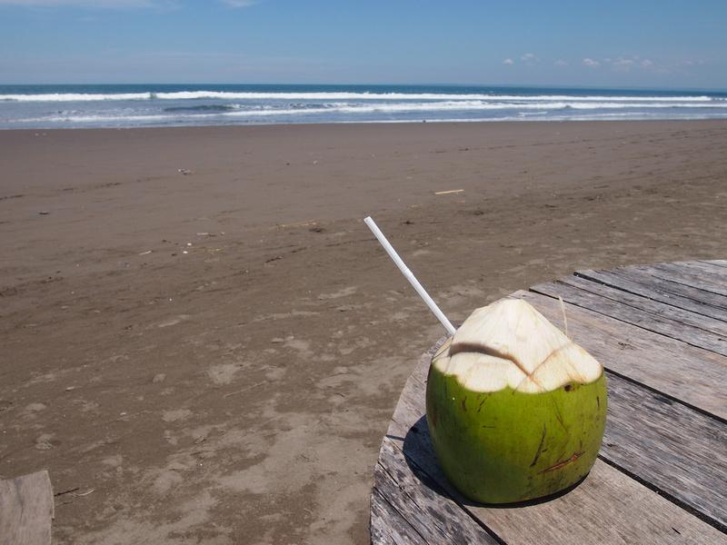 Coconut on Pangandaran Beach