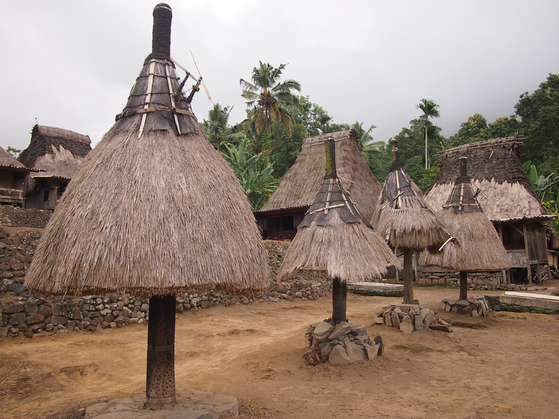 Traditional village near Bajawa - Flores