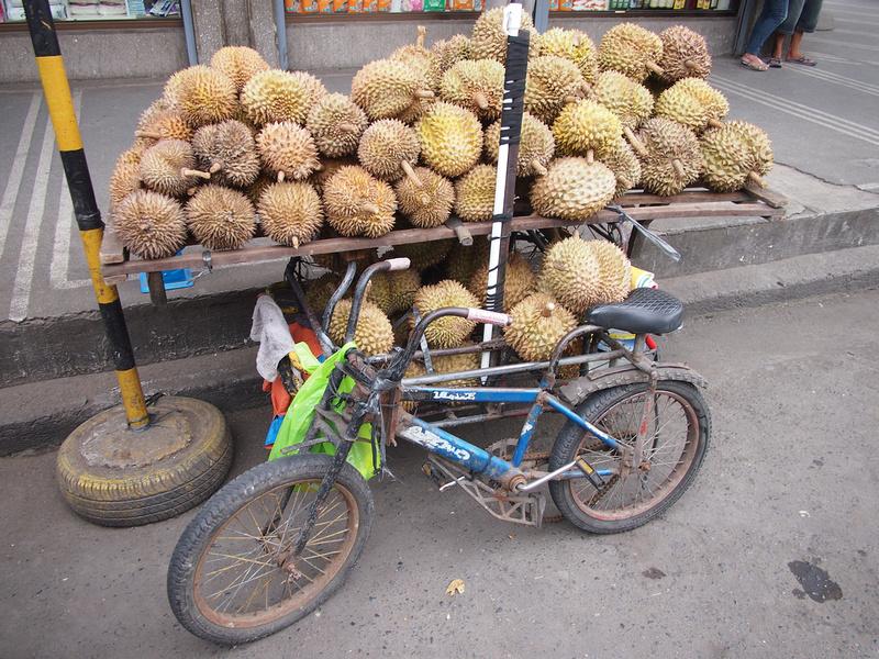 Durian bike - Davao