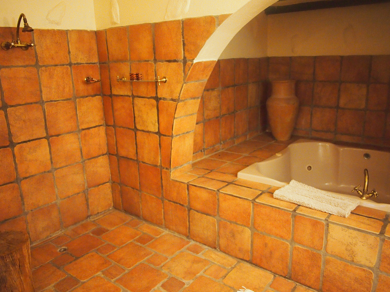 Mount Etjo Safari Lodge - bath and shower
