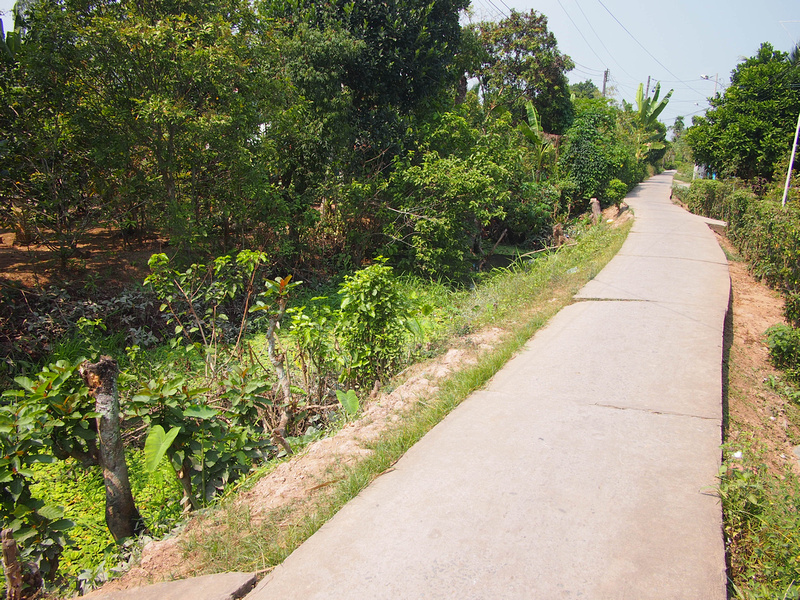 Path to Nam Thanh Homestay