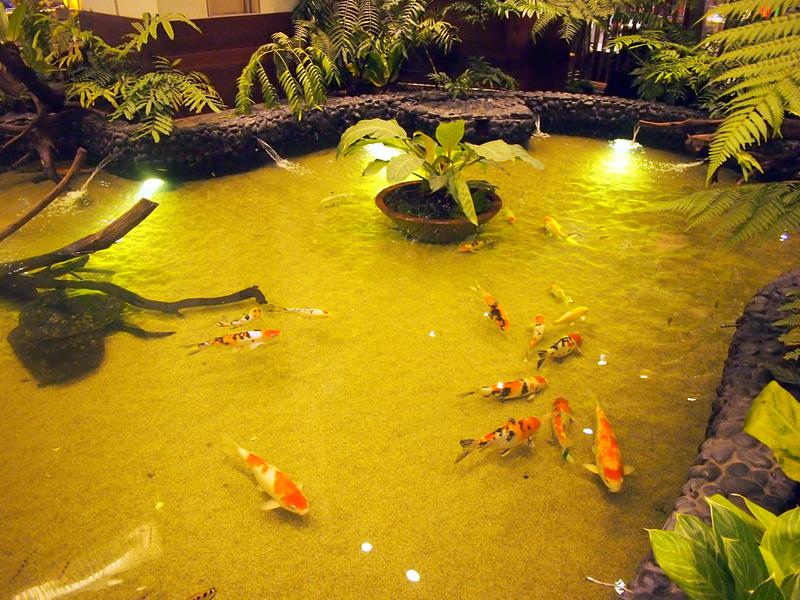 Fish Pond - Singapore Changi Airport