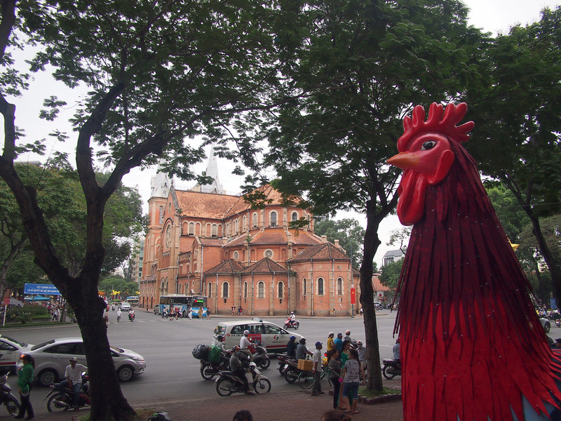 Rooster of Saigon