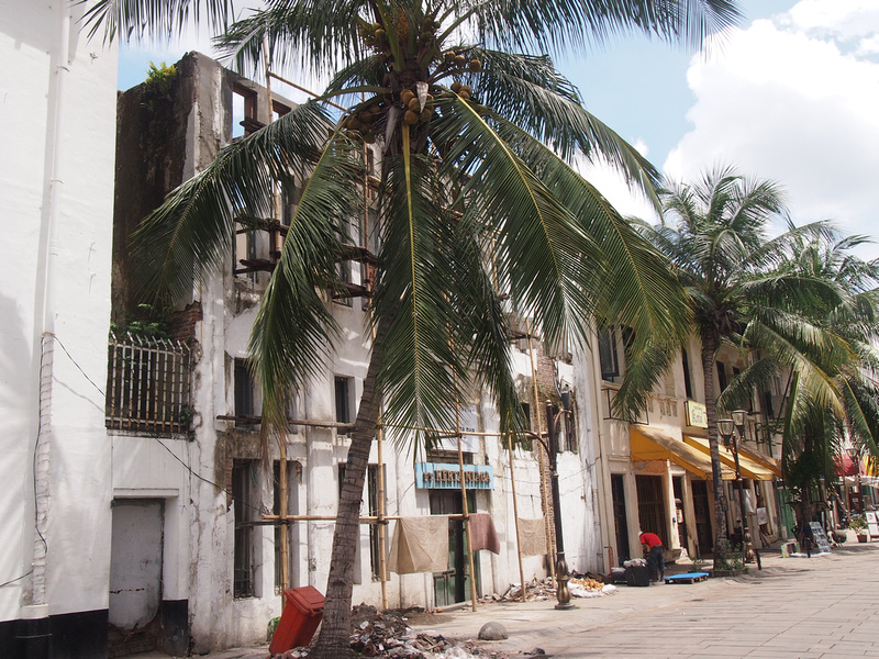 Tree lined streets of Kota (Old Jakarta)